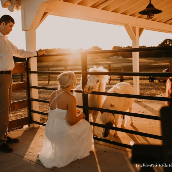 Chickadee Hill Farms Weddings